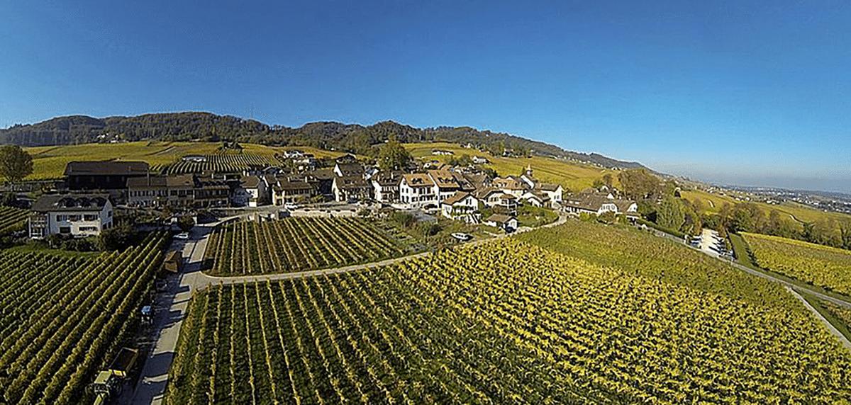 sableur canton de vaud suisse